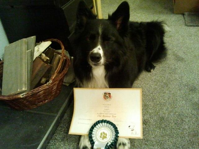 Guinness with his Silver award from 3 years ago