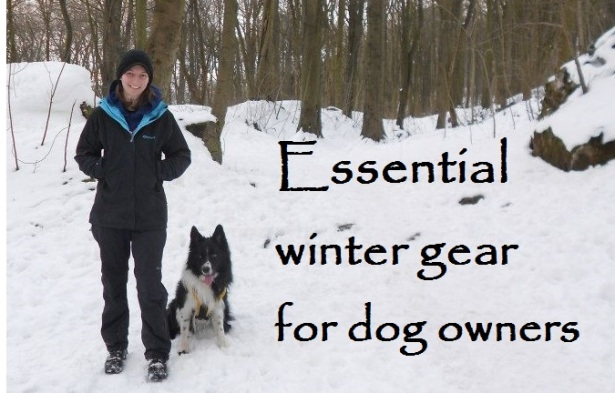 essential winter gear for dog owners