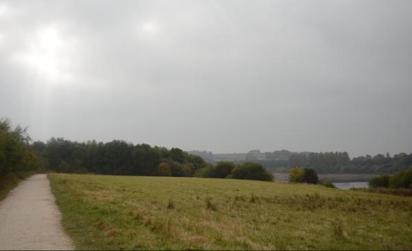 tittesworth_reservoir_dogoddity